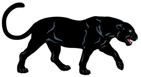 panthera: pantera nera, vista laterale immagine isolato su sfondo bianco Vettoriali