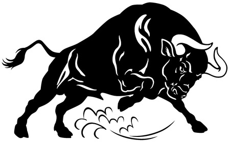bullfight: angry bull, attacking pose, black and white image  Illustration