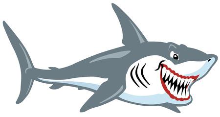 cartoon shark isolated on white  Vector
