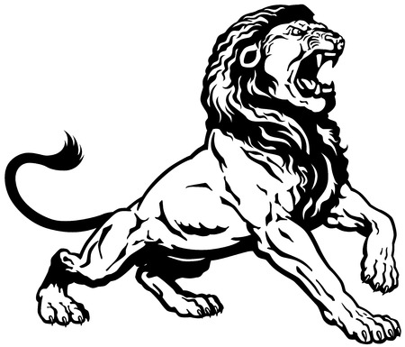 roar: roaring lion, black and white tattoo image Illustration