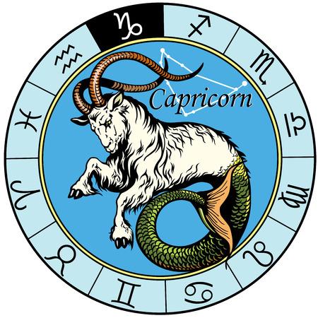 steenbok astrologische sterrenbeeld, beeld geïsoleerd op witte achtergrond