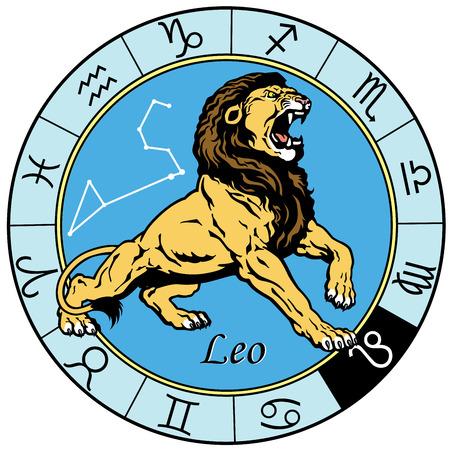 사자 또는 레오 점성술 별자리는 이미지는 흰색 배경에 고립