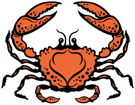 crab or cancer astrological zodiac sign Vector