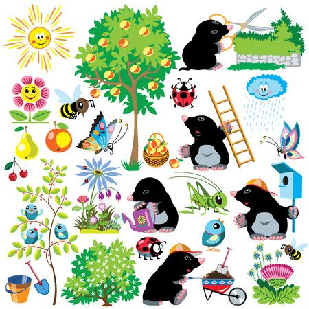 Cartoon mit Maulwurf, die in einem Garten, Gartenbau-Kollektion für kleine Kinder eingestellt, Bilder auf weißem Standard-Bild - 28465814