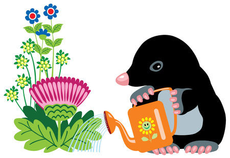 mole: cartoon mole watering flowers, isolated image for little kids
