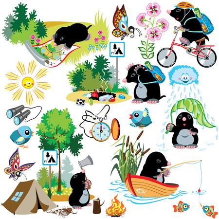 pajaro caricatura: conjunto de dibujos animados con el topo en el camping, situación diferencia, imágenes aisladas para niños pequeños
