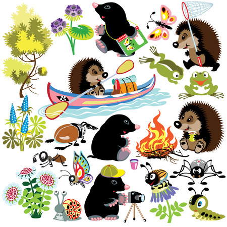 set with mole and hedgehog exploring the world of insects,isolated cartoon images for little kids