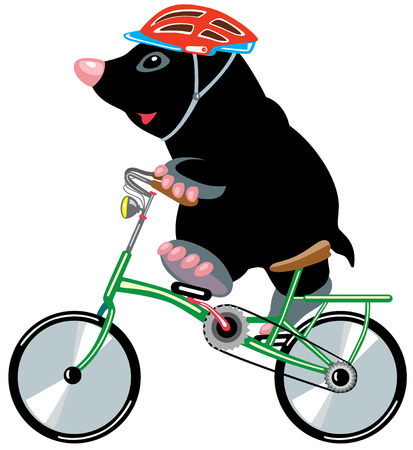 mole: cartoon mole riding a bicycle, isolated image for little kids Illustration