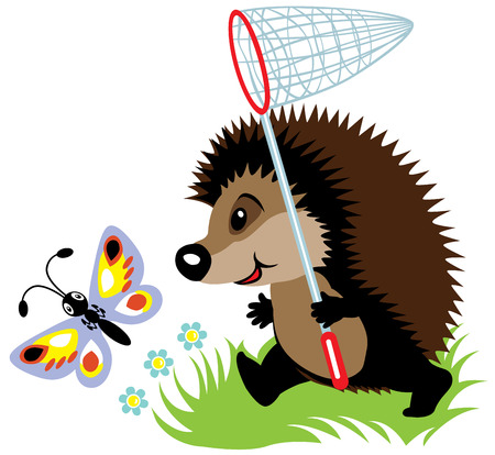 cartoon hedgehog catching butterfly, isolated image for little kids Vector