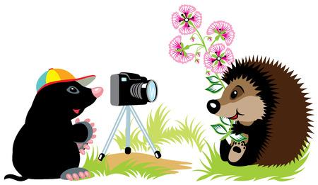 cartoon mole photographer taking photo of hedgehog,isolated image for little kids