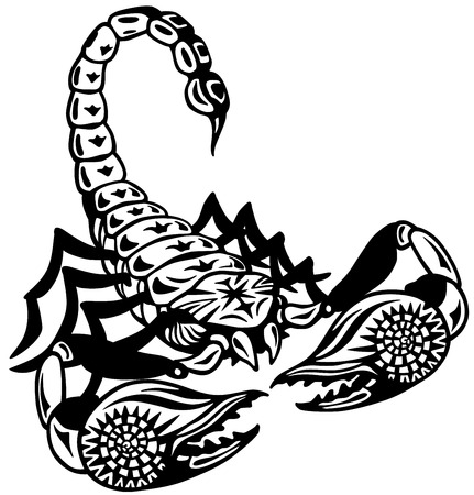 scorpion astrological zodiac sign, black and white tattoo image Vector