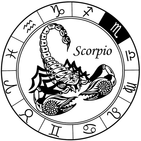 scorpio: scorpion or scorpio astrological zodiac sign, black and white tattoo image