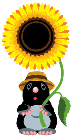 sunflower isolated: cartoon mole holding a sunflower, isolated image for little kids Illustration