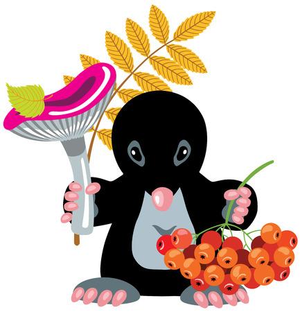ash berry: cartoon mole holding mushroom and ash berry
