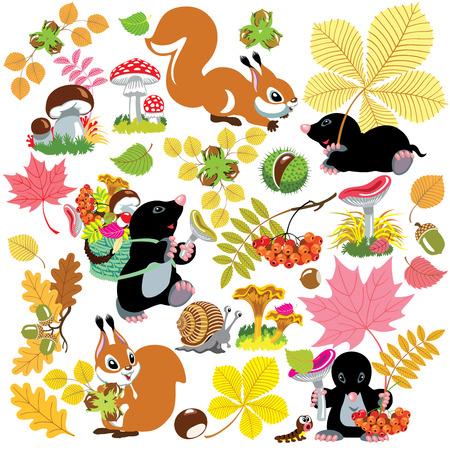 漫画の森の秋の収穫と秋の季節に、孤立した画像設定小さな子供のため