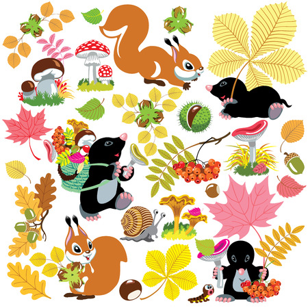 mole: cartoon set with autumnal harvest of forest, autumn season,isolated pictures for little kids