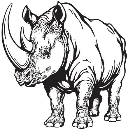staan neushoorn of neushoorn, zwart-wit beeld Vector Illustratie