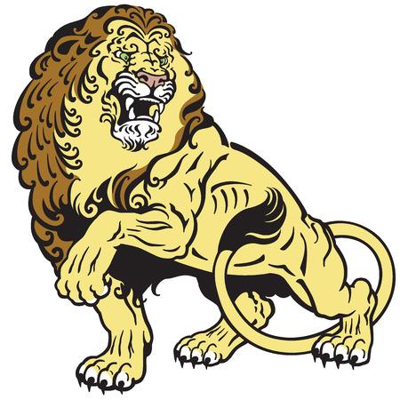 vertebrate: angry lion tattoo illustration