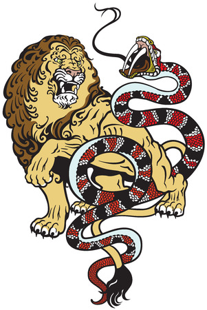 angry lion: lion and snake fighting , tattoo style illustration Illustration
