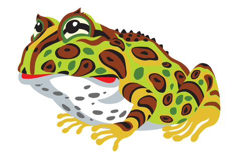 tropical frog: Cartoon horned frog. Side view image isolated on white
