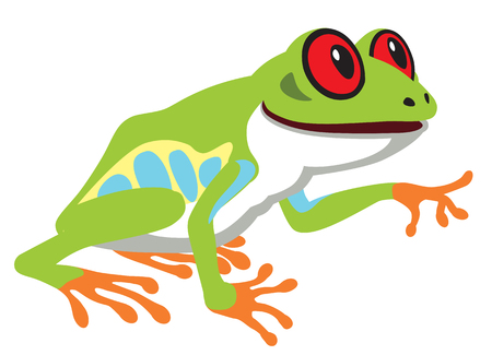 terrarium: cartoon red eye tree frog . Side view image isolated on white Illustration