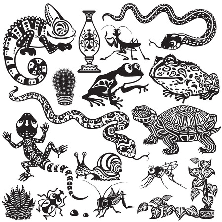 Set with reptiles, amphibians and insects. Cartoon animals of terrarium Stock Illustratie
