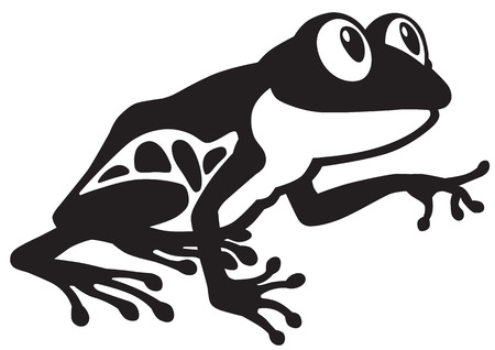 terrarium: cartoon red eye tree frog. Black and white side view image