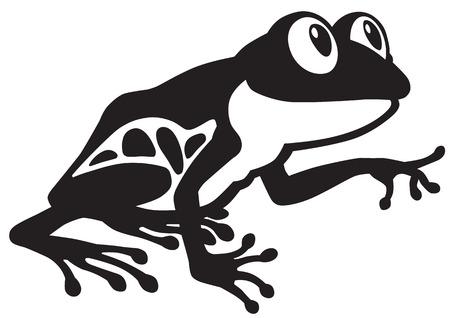 rana caricatura: de dibujos animados de ojos rojos rana de árbol. Imagen Vista lateral blanco y negro Vectores