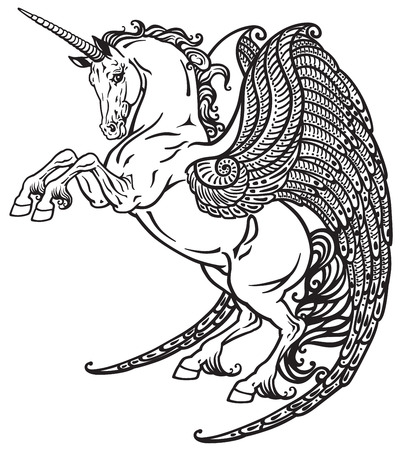 pegasus: winged unicorn mythological horse . Black and white image