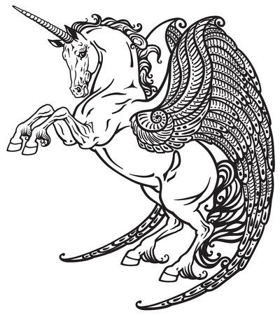 unicorn: winged unicorn mythological horse . Black and white image