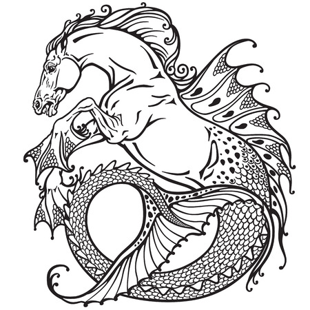 mythology: hippocampus or kelpie mythological sea-horse . Black and white image