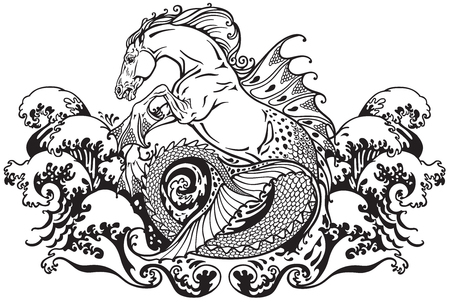 mythology: hippocampus or kelpie mythological sea horse . Black and white illustration