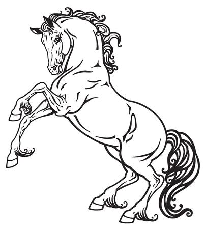 image paard zwart-wit schets grootbrengen