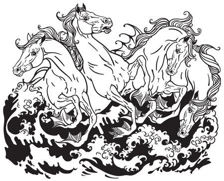 four mythological seahorses hippocampus Black and white illustration Illustration