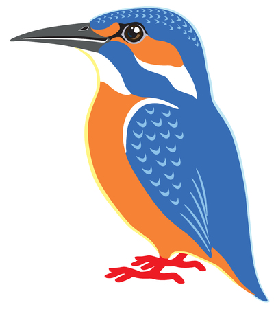 common kingfisher: common kingfisher side view isolated image