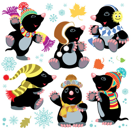 mole: set with cartoon mole wearing knitted hat and scarf at winter time . Isolated images for little kids