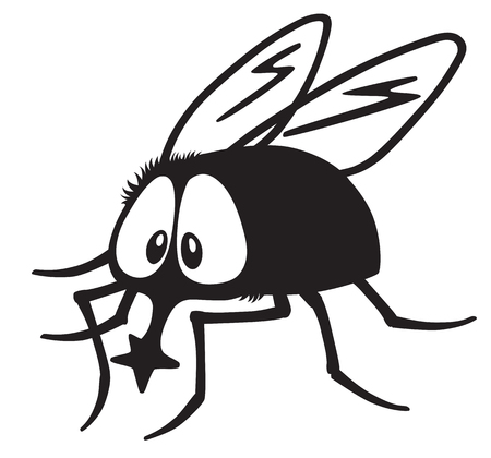 white fly: Cartoon fly insect black and white