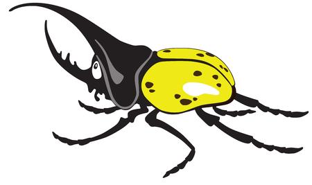 male animal: cartoon  giant hercules or rhinoceros beetle male. Vector isolated on white Illustration