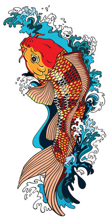 koi carp gold fish swimming upstream. Vector illustration tattoo style drawing
