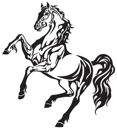 The horse stallion in the rearing free movement . Elegant tribal tattoo style black and white vector illustration