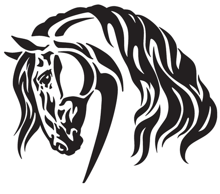 Head of heavy draft horse. Black and white tribal tattoo style vector illustration.