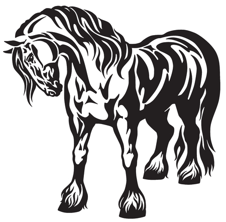 heavy draft horse Black and white tribal tattoo style vector illustration