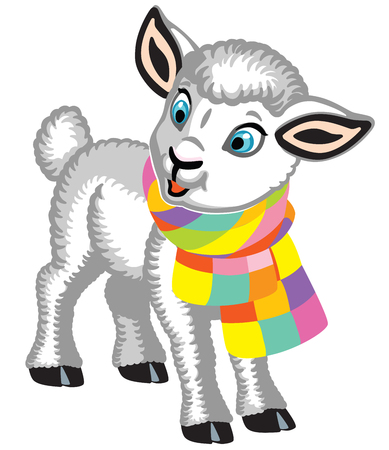 cartoon baby sheep wearing a colorful knitted scarf . Cute white lamb . Isolated vector illustration for little kids