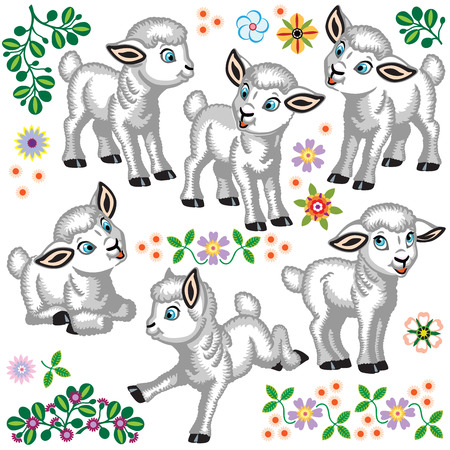 set of cartoon baby sheep. Collection of young white lamb and decorative flowers . Isolated vector illustration for little kids 向量圖像