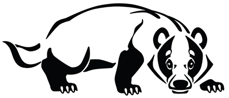 European badger, emblem, tattoo . Black and white vector illustration