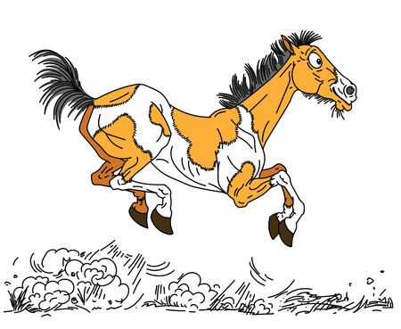 cartoon old horse . The happy aged pinto colored mare or mustang running free in the gallop . Side view vector illustration