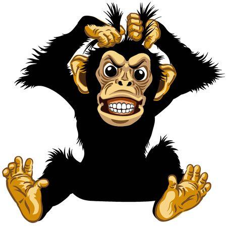 cartone animato scimpanzé o scimmia scimpanzé tira fuori i suoi capelli di pelliccia e mostra i suoi denti. Emozione arrabbiata o stressata. Posa seduta nella vista frontale. Illustrazione vettoriale isolato