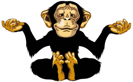 cartoon chimp great ape or chimpanzee monkey sitting in lotus joga position and meditating. Calm and peaceful emotion. Front view. Isolated vector illustration