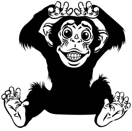 cartoon chimp ape or chimpanzee monkey smiling cheerful with a big smile on face showing teeth. Positive and happy emotion. Sitting pose. Front view. Black and white isolated vector illustration Stock Illustratie