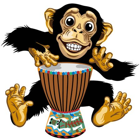 Cartoon monkey drummer. Happy chimp great ape or chimpanzee hands playing on the African ethnic percussion drum and smiling cheerful with a big smile on face showing teeth. Isolated vector illustration Stock Illustratie